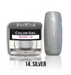 Color Gel - 14 Silver