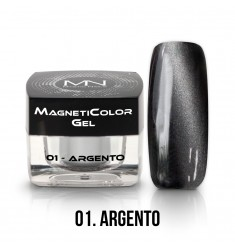 Magnetic Color Gel - Argento-01